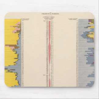 Fiscal Chart, Statistical US Lithograph Mouse Pad