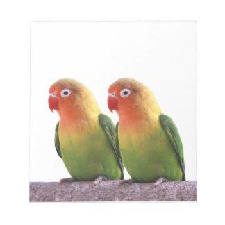 Fischer's Lovebird Notepad