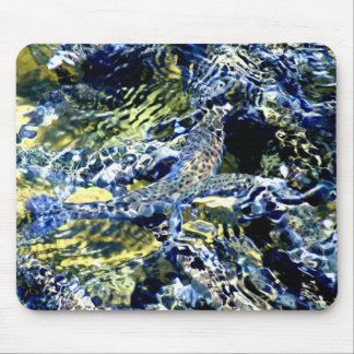 Fish10by8 Mouse Pad