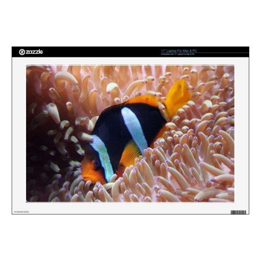 "fish-001 17"" laptop decal"