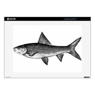 "Fish 15"" Laptop Decal"