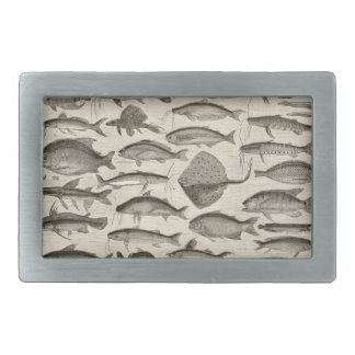 Fish Amazon River Vintage Art Species Belt Buckle
