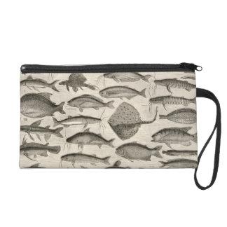 Fish Amazon River Vintage Art Species Wristlet