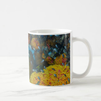 Fish Among Coral Reef Coffee Mug