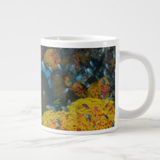 Fish Among Coral Reef Large Coffee Mug