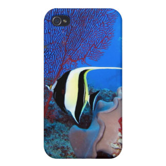 Fish and Coral iPhone 4 case