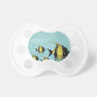 fish animal swim dive marine sports pacifier