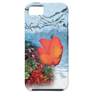 Fish Aquarium#2  iPhone 5/5S Case