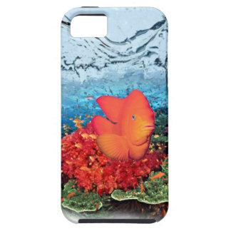 Fish Aquarium  iPhone 5/5S Case