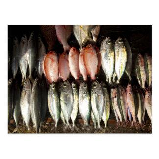 Fish at market, town of Kalabahi, Alor Island, 2 Postcard