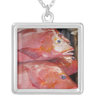 Fish at market, town of Kalabahi, Alor Island, Silver Plated Necklace