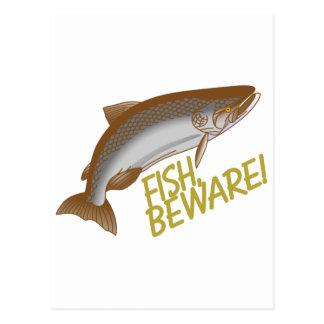 Fish Beware Postcard