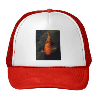 Fish - Big fish little pond Mesh Hat