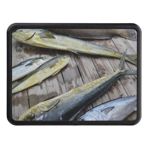 Fish boat trailer hitch cover zazzle for Fish hitch cover