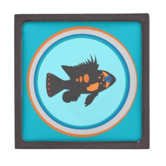 Fish Bowl Gift Box