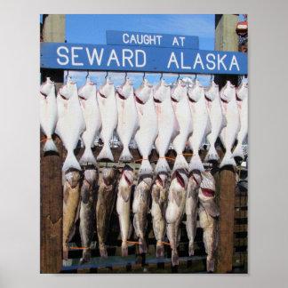 Fish caught at Seward, Alaska Poster