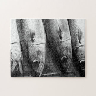 Fish closeup in black and white jigsaw puzzle