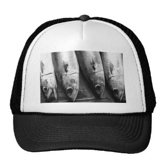 Fish closeup in black and white trucker hat
