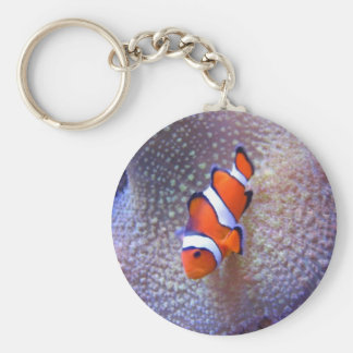 fish,clown fish keychain