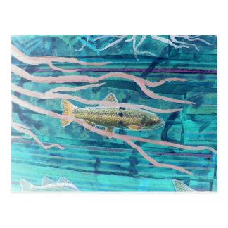 Fish Collage Detail Postcard
