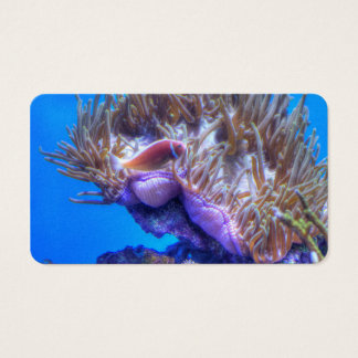 Fish Coral House Business Card
