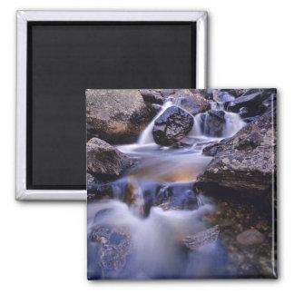Fish Creek Falls near Steamboat Springs Colorado 2 Inch Square Magnet