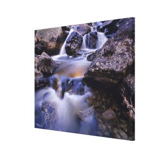 Fish Creek Falls near Steamboat Springs Colorado Canvas Print