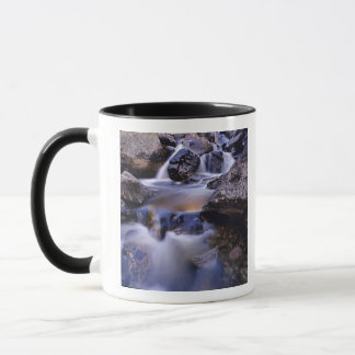 Fish Creek Falls near Steamboat Springs Colorado Mug