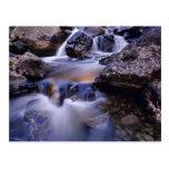 Fish Creek Falls near Steamboat Springs Colorado Post Cards