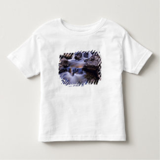 Fish Creek Falls near Steamboat Springs Colorado Toddler T-shirt