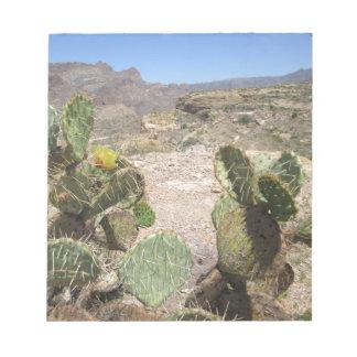 Fish Creek Hill Vista Prickly Cactus Memo Pad
