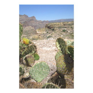 Fish Creek Hill Vista Prickly Cactus Stationery