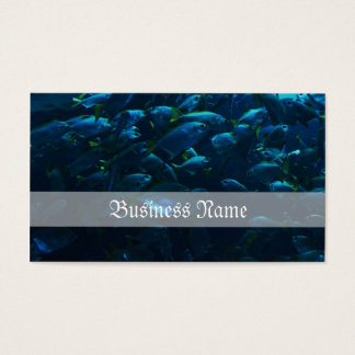 Fish Crowd Business Card