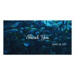 Fish Crowd Customized Photo Card