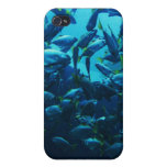 Fish Crowd iPhone 4/4S Cover