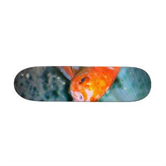Fish Custom Skate Board