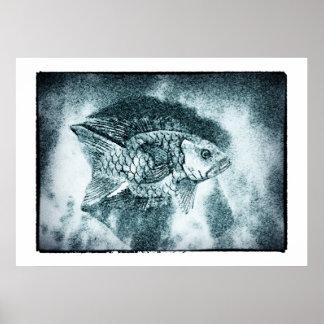 Fish - digi & photo ink art (Poster) Poster
