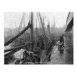 Fish docks, Grimsby, early 20th century Postcard
