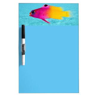 Fish Dry-Erase Board