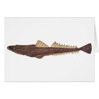 Fish - Dusky Flathead - Platycephalus fuscus Greeting Card