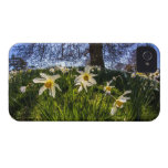 Fish Eye Daffodil Landscape Case-Mate iPhone 4 Case