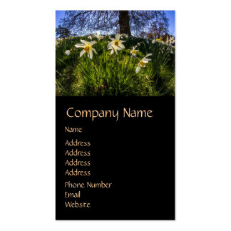 Fish Eye Daffodil Landscape Double-Sided Standard Business Cards (Pack Of 100)