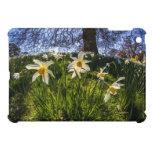 Fish Eye Daffodil Landscape iPad Mini Covers