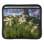 Fish Eye Daffodil Landscape Sleeve For iPads