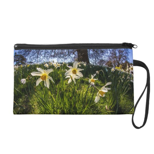 Fish Eye Daffodil Landscape Wristlet