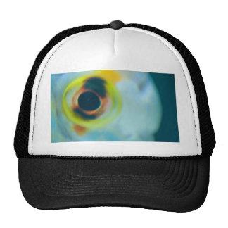fish eye trucker hat