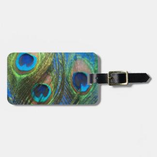 Fish Eye Peacock Still Life Bag Tag