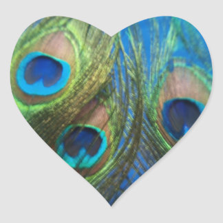 Fish Eye Peacock Still Life Heart Shaped Stickers