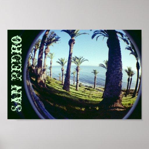 Fish Eye San Pedro Palm Trees Coastline Print