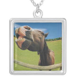 Fish-eye View of Horse Silver Plated Necklace